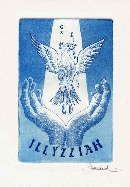Illyzziah (2), 9x12