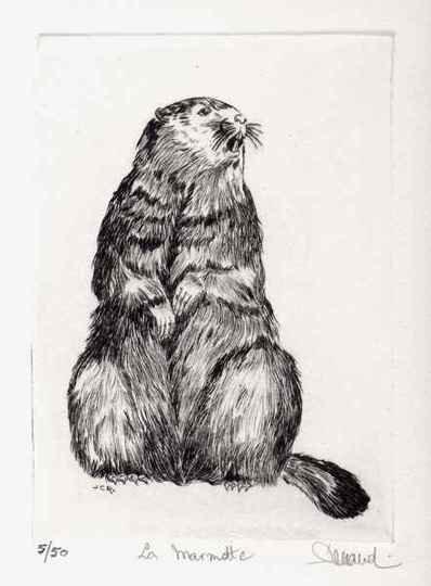 137 La Marmotte, Eau-forte, 24x30 cm